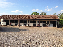 Schooling and Holiday Livery Stables